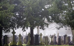 Работник кладбища ограбил могилу наказание